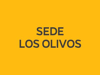 Bienvenida Working Adult Los Olivos